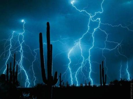 lightening and cactus